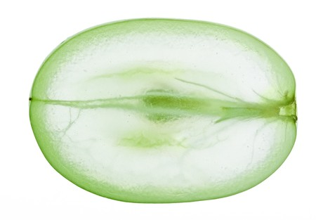 Translucent slice of green grape fruit, macro isolated on white Stock Photo - 7779989