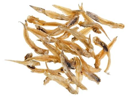 goby: Molti pesci salati Gobiidae isolati su sfondo bianco Archivio Fotografico