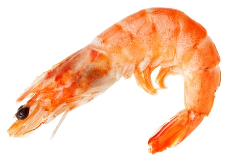 shelled: Cooked shelled tiger shrimp isolated on white Stock Photo