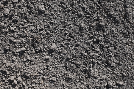 dirt: Cultivated gray dried soil, nature background