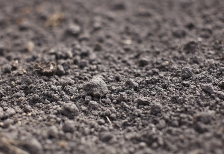 Cultivated gray dried soil, nature background photo