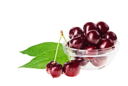 dark cherry: Still life with pair of red wet cherry fruit on stem and glass bowl, isolated on white