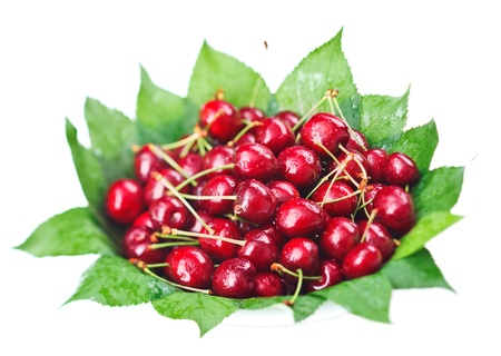 Many red wet cherry fruits (berries) on green leaves in round plate, isolated on white photo