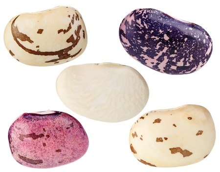 legumbres secas: Phaseolus vulgaris conjunto aislado en blanco de alta calidad extrema resoluci�n de disparo macro