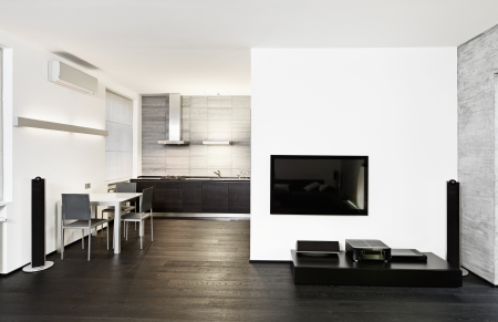 interior drawing: Modern minimalism style kitchen and drawing room interior in monochrome tones