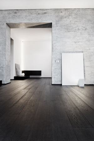 Modern minimalism style corridor interior in black and white tones photo