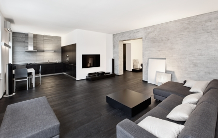 Modern minimalism style drawing-room inter in black and white tones Stock Photo - 14883185