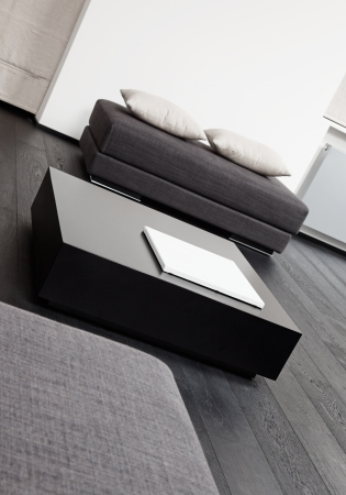 furniture detail: Part of modern sitting room interior in black and white tones