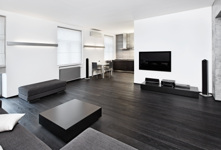 Modern minimalism style sitting room inter in black and white tones Stock Photo - 14883175
