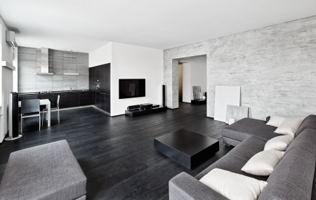 Modern minimalism style drawing-room interior in black and white tones Stock Photo - 14959139