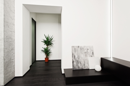 Modern minimalism style hall interior in black and white tones Stock Photo - 14959128
