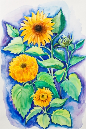 Yellow sunflowers, watercolor painting Stock Photo - 14997612