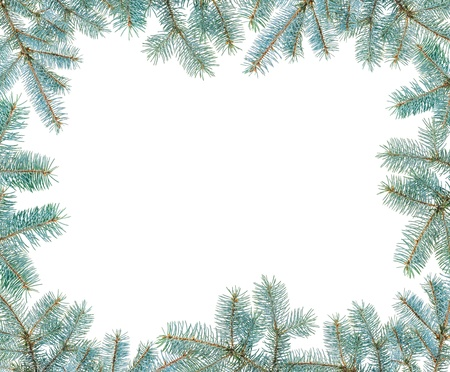 Frame made with blue spruce twigs isolated on white, copyspaced photo