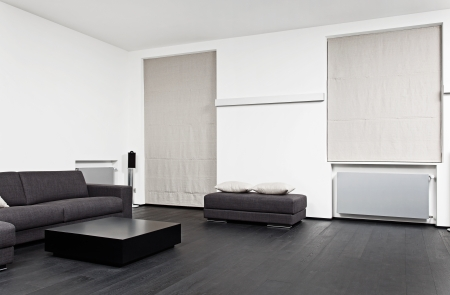 Part of modern sitting room interior in black and white tones Stock Photo - 15766816