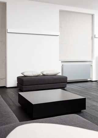 Part of modern sitting room interior in black and white tones photo