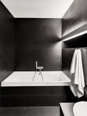 bathroom interior: Modern minimalism style bathroom interior in black and white tones