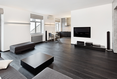 Modern minimalism style sitting room interior in black and white tones Stock Photo