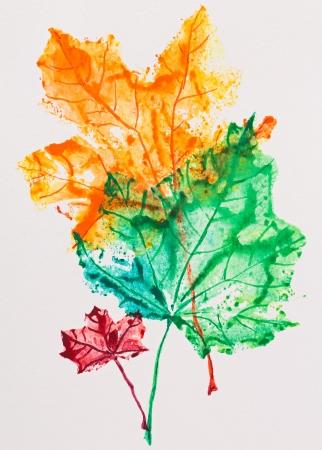 aquarel: Maple leaves imprint, watercolor painting