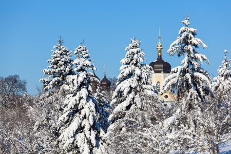 Beautiful winter landscape with snow covered firs and old church photo