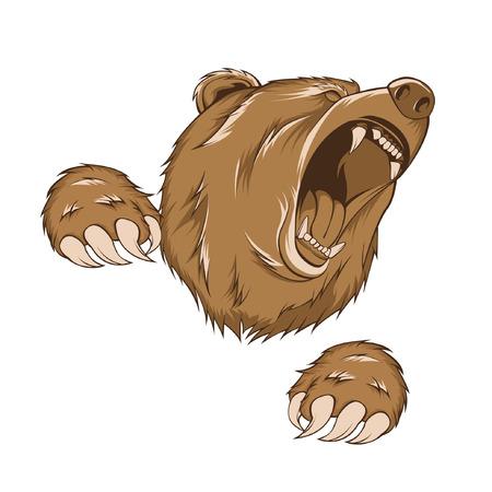 angry bear: oso grizzly, vector con cero plantear