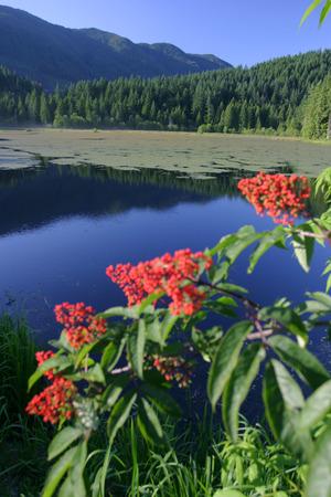greater: Minnekhoda Regional Park Greater Vancouver