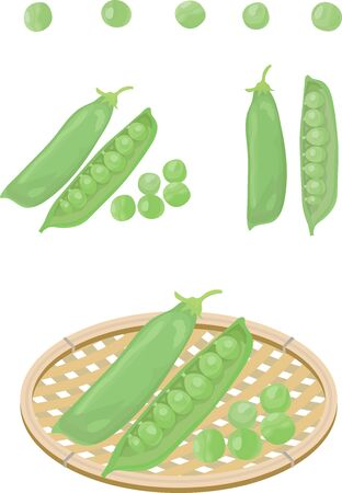 Set of various green peas and baskets.