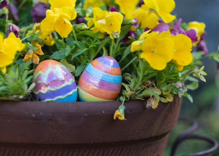 easter in a potted plant Stockfoto