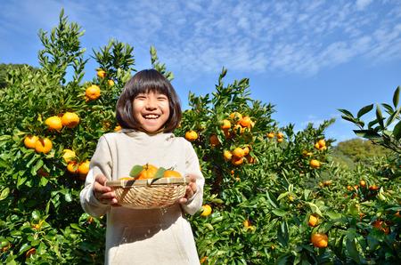 Girls enjoy picking oranges
