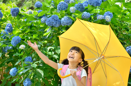 Elementary school students put up an umbrella girls rainy season