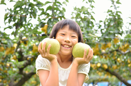 asian pear: Girls enjoying pear picking