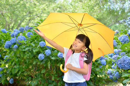 Hydrangea and elementary school girls Stock Photo