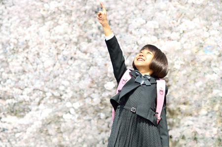 The first grade girl and cherry blossom Stock Photo