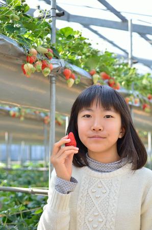 Girls enjoying strawberry picking