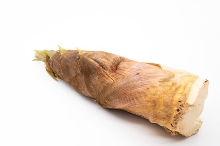 Bamboo shoots on white background