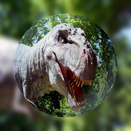 zoomed: Tyrannosaurus rex zoomed in detail Stock Photo