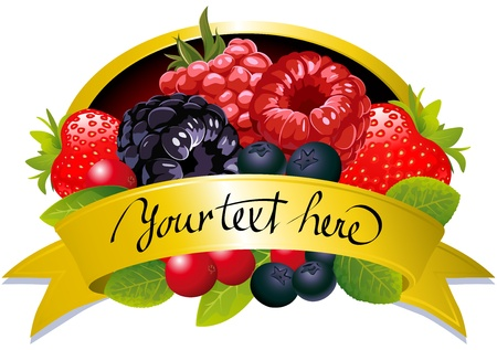 blueberry: label with berries Illustration