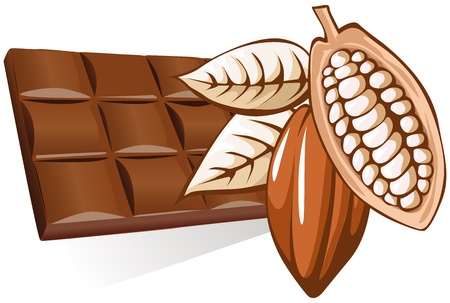 ココア: チョコレートとカカオ豆  イラスト・ベクター素材