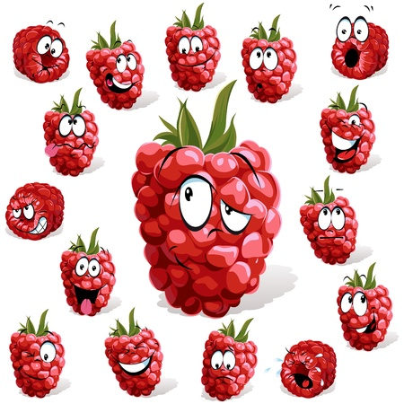 organic raspberry: raspberry with many expressions  Illustration