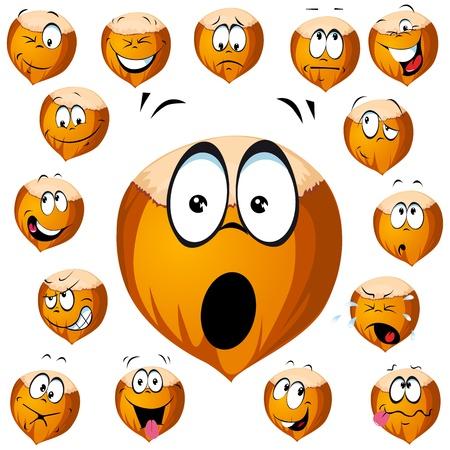 orzechów: kreskówka orzech laskowy