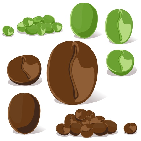 green coffee beans: coffee bean