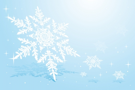 snowflake on snow Stock Vector - 14951851
