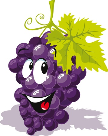 grapes in isolated: wine grape cartoon