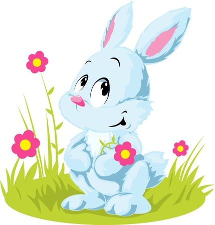 big ear: white rabbit