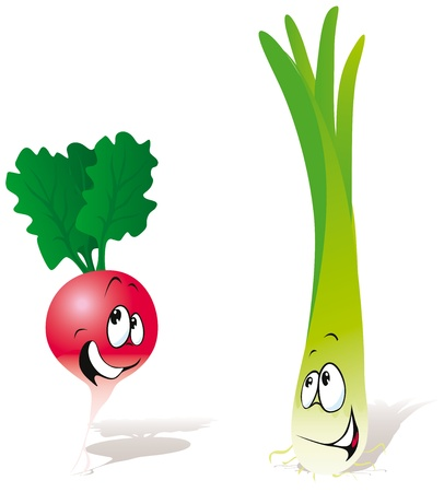 radish and green onion Vector