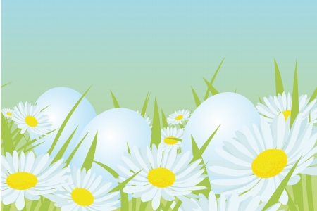 easter white eggs on the daisy field Stock Vector - 15017229