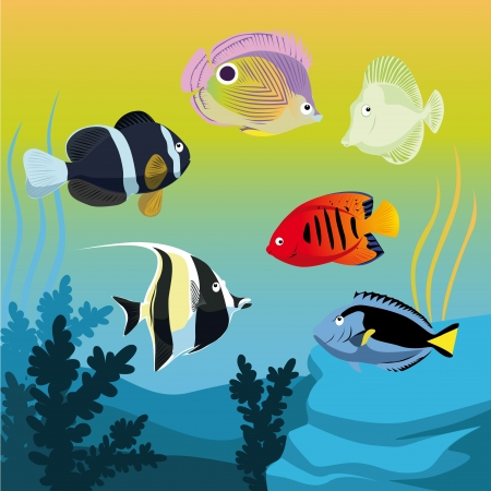 colorful fishes in aquarium Vector