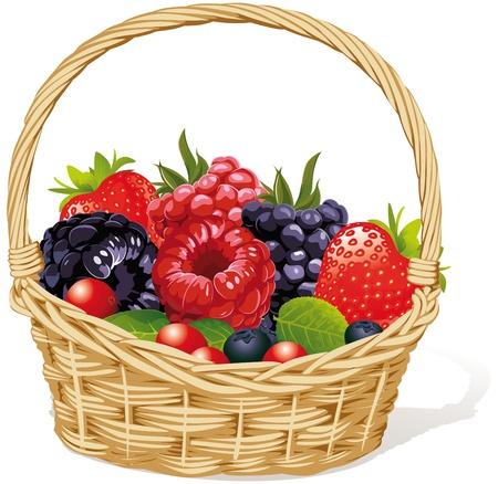 canasta de frutas: canasta con frutas