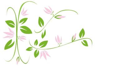 morning glory: floral design