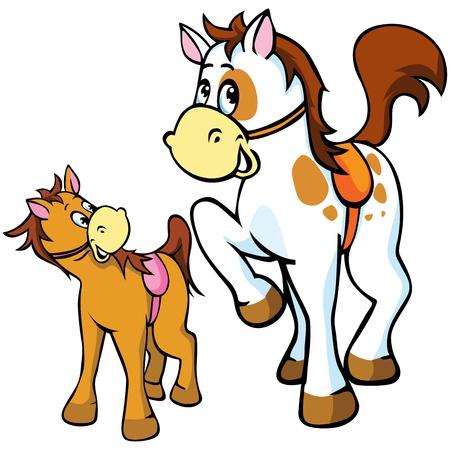 csikó: ló illusztráció elszigetelt fehér háttér Illusztráció