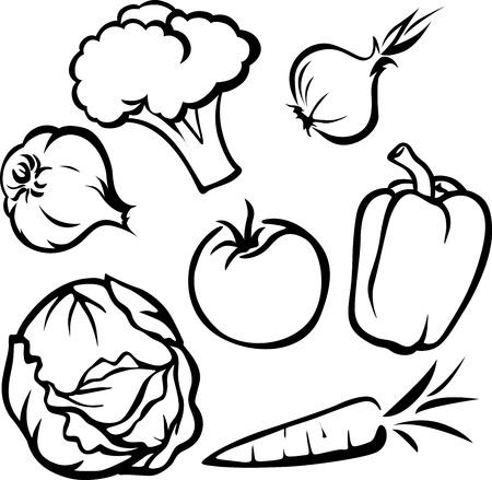 콜리 플라워: 야채 일러스트 레이 션 - 흰색 배경에 검은 윤곽